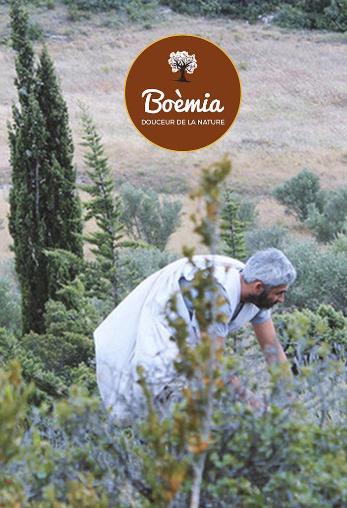 laboratoire aromathérapie Boémia au Centre de Bien-être et de beauté Après la pluie